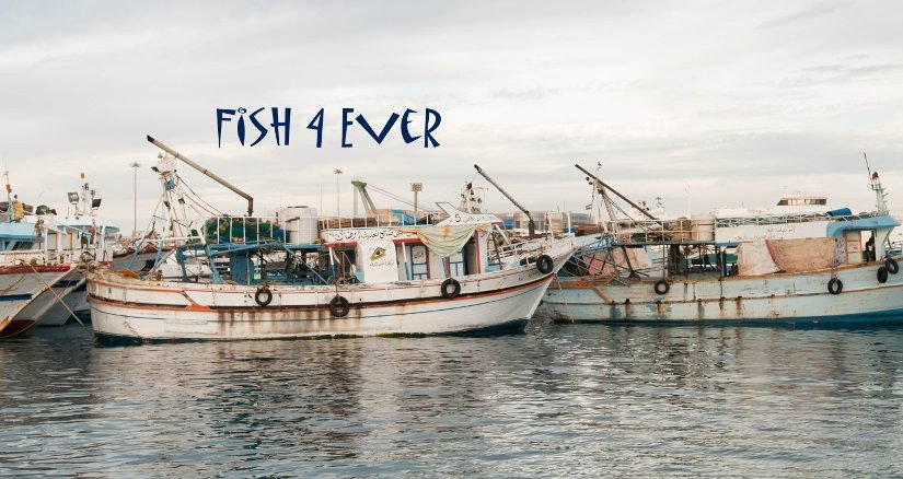 Fish4Ever – More Sustainable Fish & Seafood